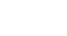 Turkish Property Professional